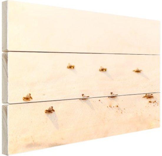Baby schildpadden  Hout 30x20 cm - klein - Foto print op Hout (Wanddecoratie)
