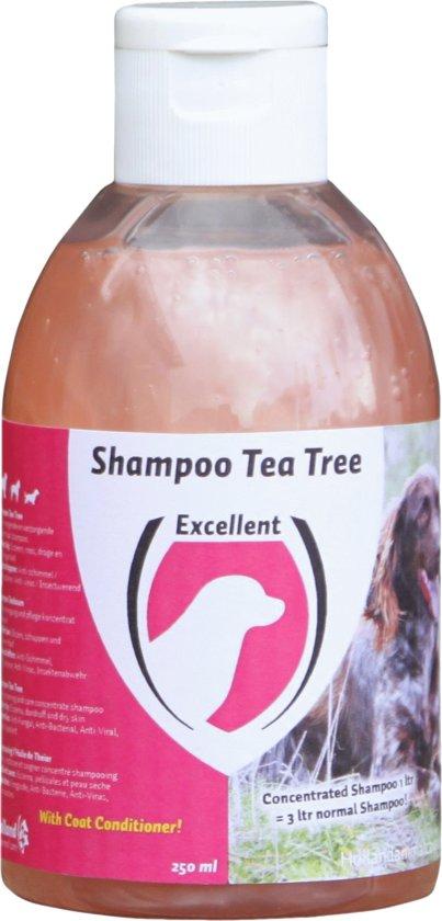 Shampoo - Tea Tree Dog