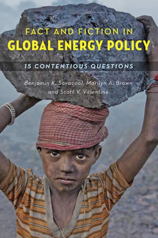 global energy dilemmas bradshaw mike