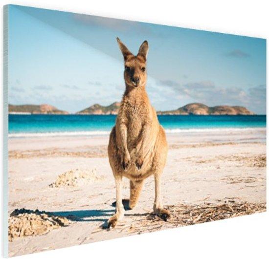 Kangoeroe op het strand Australie Glas 120x80 cm - Foto print op Glas (Plexiglas wanddecoratie)