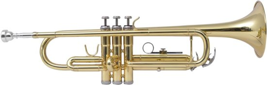 vidaXL Trompet messing met goudlak Bb