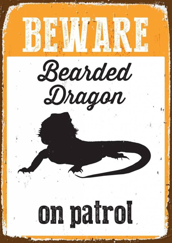 Beware Bearded Dragon On Patrol