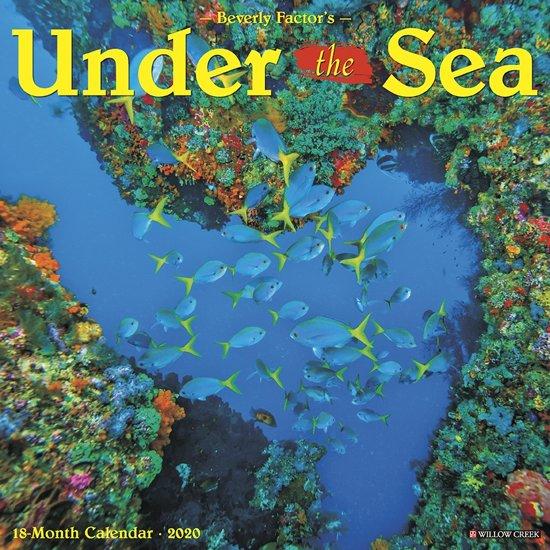 Under the Sea Kalender 2020