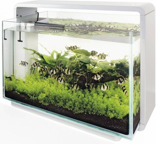 bol.com   SuperFish Home Aquarium - 58.5x32x42.5 cm - 60L - Wit