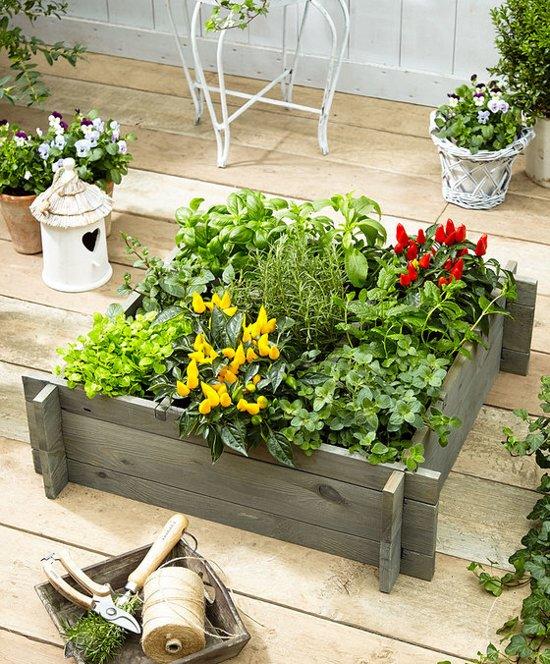 Favoriete Moestuinbakken, zelf je groenten verbouwen in bakken of potten KM71