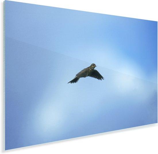 Veldleeuwerik in de blauwe lucht Plexiglas 90x60 cm - Foto print op Glas (Plexiglas wanddecoratie)