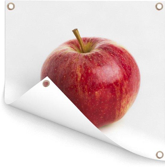 Mooie glans op de rode appel Tuinposter 50x50 cm - klein - Tuindoek / Buitencanvas / Schilderijen voor buiten (tuin decoratie)