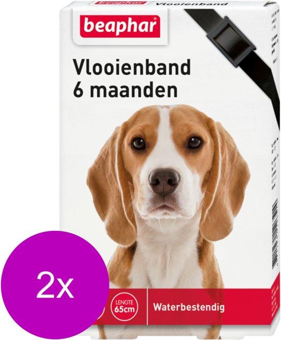 Beaphar Vlooienband 6 Mnd Hond 65 cm - Anti vlooienmiddel - 2 x Zwart