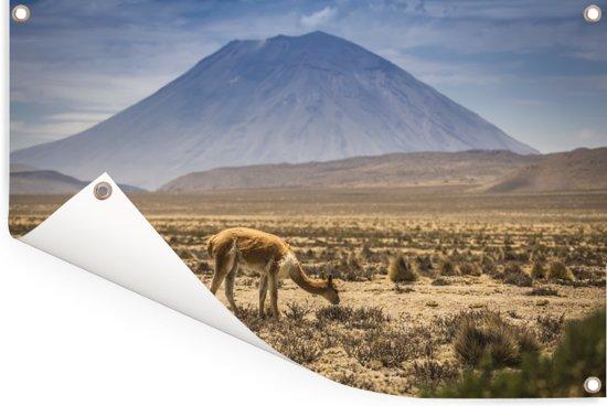 Het vulkanische landschap van Arequipa omringt door mist Tuinposter 180x120 cm - Tuindoek / Buitencanvas / Schilderijen voor buiten (tuin decoratie) XXL / Groot formaat!