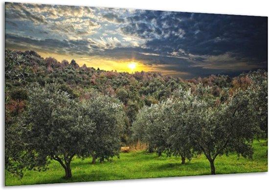 Glasschilderij Natuur | Groen, Geel, Blauw | 120x70cm 1Luik | Foto print op Glas |  F002638