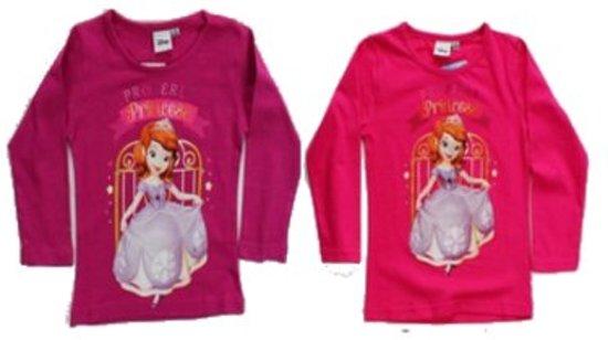 Disney Sofia Princess longsleeve maat 104 - 1 stuk