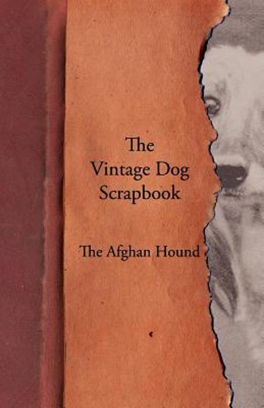 The Vintage Dog Scrapbook - The Afghan Hound
