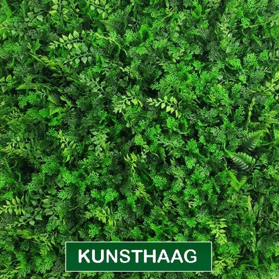 Kunsthaagvoordeel Kunsthaag Vegetatie Fijn Blad 1 M2 Oppervlakte En Eenvoudig Te Koppelen