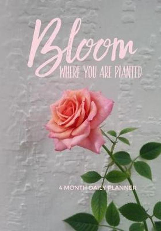 Bloom Where You Are Planted 4 Month Daily Planner