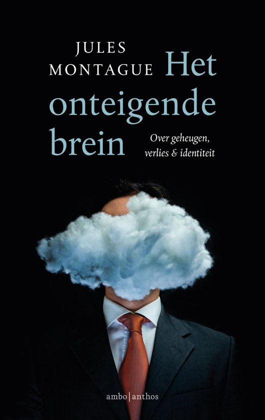 Het onteigende brein - Over geheugen, verlies en identiteit