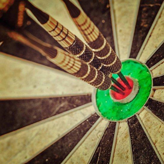 #DoYourDart - 12x steeltip dartpijlen incl. case voor opslag - »Hard-Strike« - Barrels van ijzer en veel grip, plastic Shafts | 4x Motto Dart-Flights (PET) incl. 30x extra flights - de darts: 18g - goudkleurig