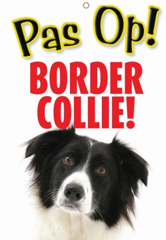 pas op border collie