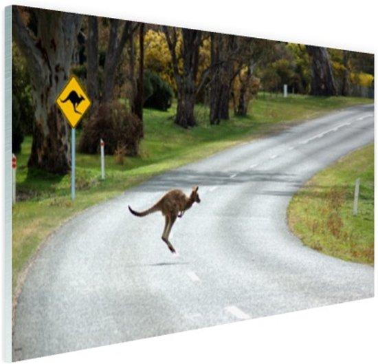 Overstekende kangoeroe Glas 60x40 cm - Foto print op Glas (Plexiglas wanddecoratie)