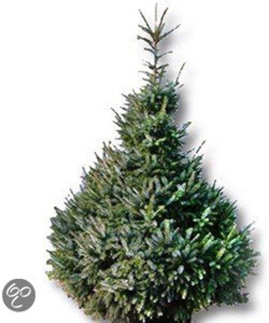 Bol Com Echte Kerstboom Picea Omorika 175 200cm