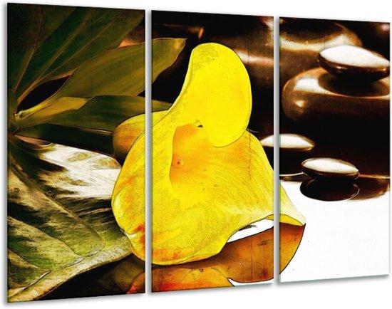 Glasschilderij Bloem | Geel, Bruin, Groen | 120x80cm 3Luik | Foto print op Glas |  F004770