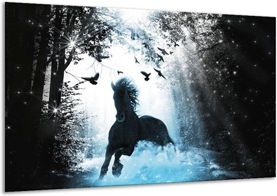 Glas schilderij Paard, Dieren   Blauw, Zwart, Wit   120x70cm 1Luik   Foto print op Glas    F007020