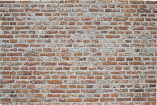 bol   mars & more - deurmat - binnenmat - bakstenen muur - 75x50cm