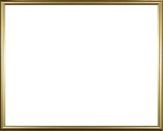 Homedecoration Biggy – Fotolijst – Fotomaat – 42 x 46 cm – Kunststof – Goud