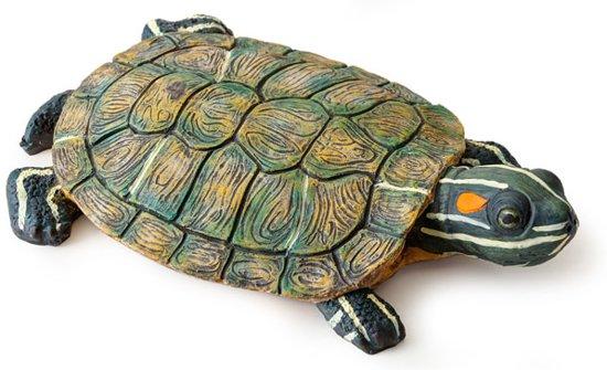 Floating Island Schildpad