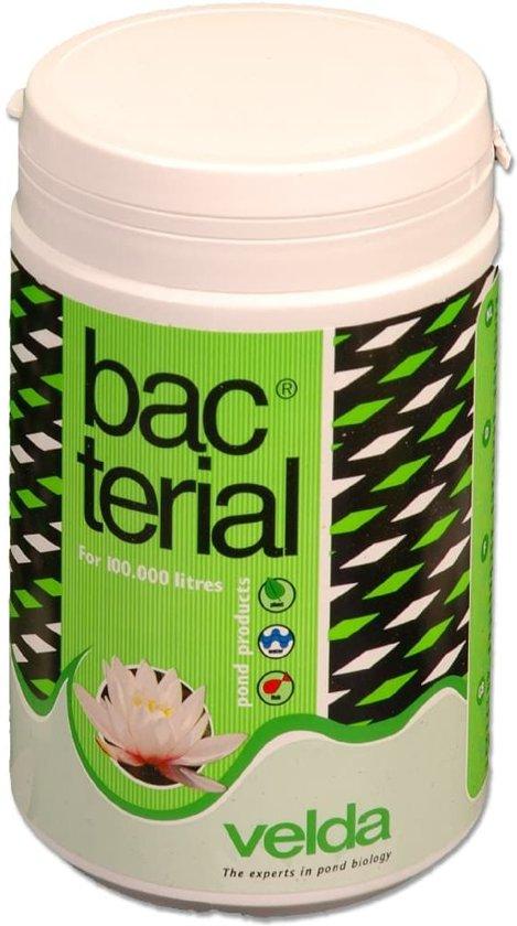 Velda Vijverbalans bacterial 1.000ml 122636