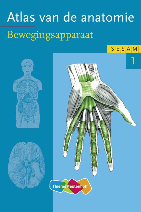 Sesam atlas van de anatomie / deel 1 Bewegingsapparaat