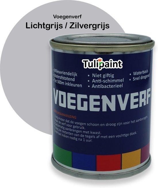 bol.com | Tulipaint Voegenverf (Lichtgrijs / Zilvergrijs) - voegen ...