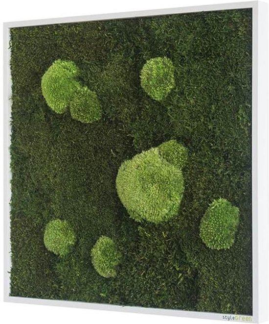 Verticale tuin - Flat & Pole moss - 55 x 55cm