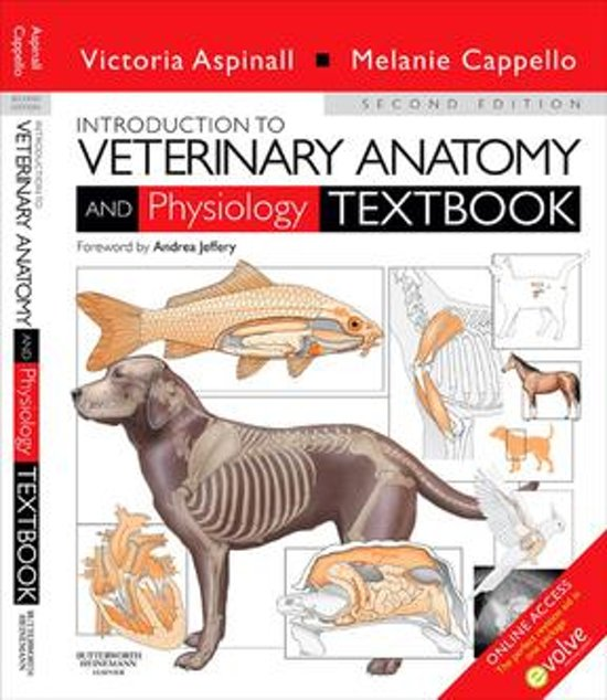 bol.com | Introduction to Veterinary Anatomy and Physiology E-Book ...