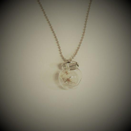 Fashionidea - Mooie zilverkleurige ketting met madeliefjes in een glazen bolletje.