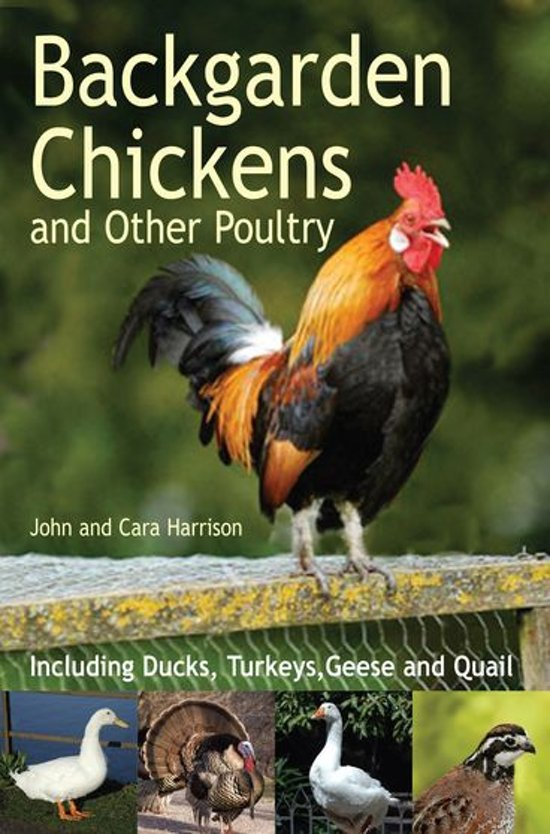 Bol Backgarden Chickens And Other Poultry Ebook John