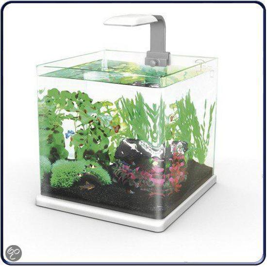 Superfish qubie aquarium 25 liter antraciet for Aquarium 80 litres