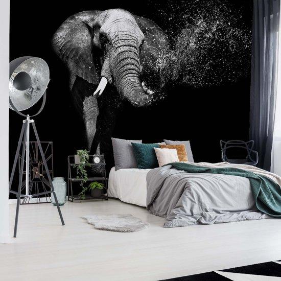 Fotobehang Black And White Elephant   VEM - 104cm x 70.5cm   130gr/m2 Vlies