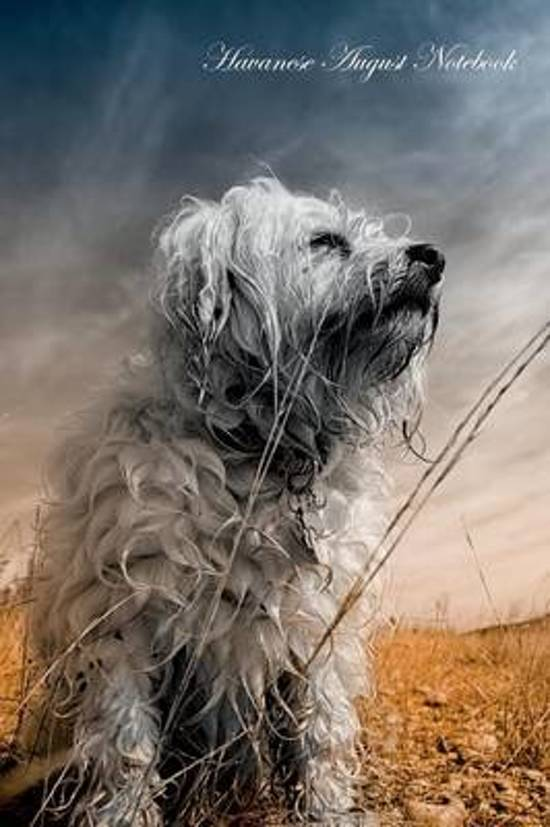 Havanese August Notebook Havanese Record, Log, Diary, Special Memories, to Do List, Academic Notepad, Scrapbook & More