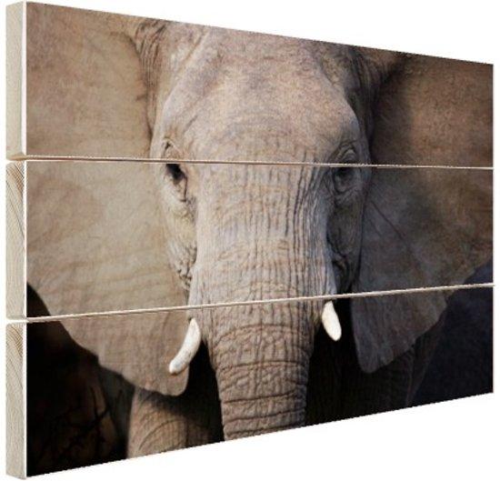 Close-up van olifant Hout 60x40 cm - Foto print op Hout (Wanddecoratie)