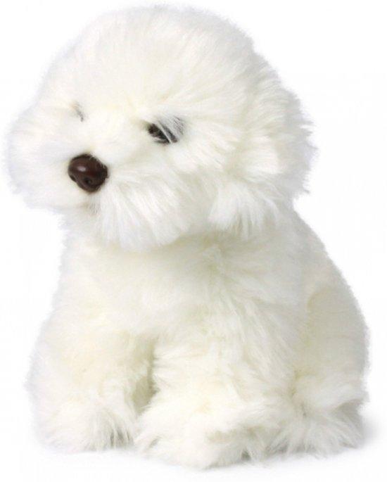 bol   knuffel hond maltezer leeuwtje 18 cm, anna club plush