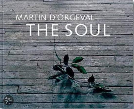 Martin D'Orgeval