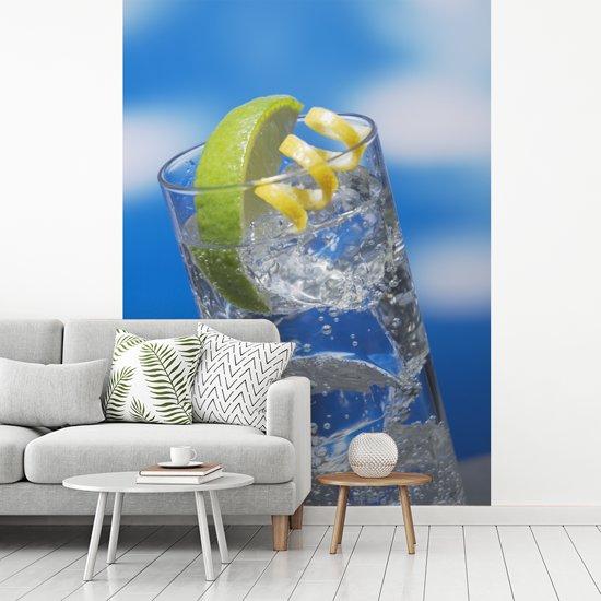 Fotobehang vinyl - Gin tonic met een blauwe lucht breedte 255 cm x hoogte 350 cm - Foto print op behang (in 7 formaten beschikbaar)