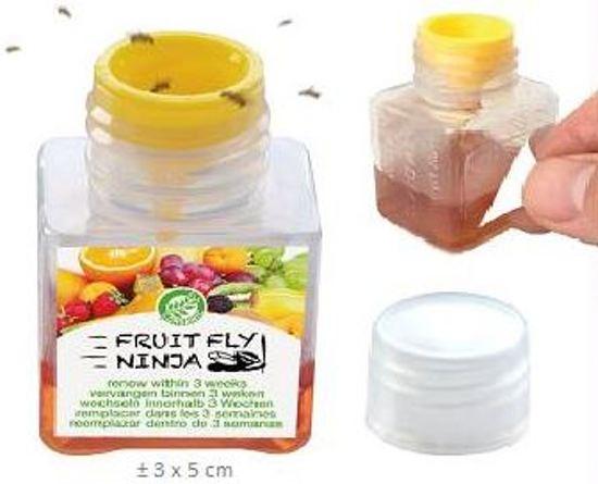 Fruit Fly Ninja® fruitvlieg vanger, fruitvliegjes vanger, fruitvliegval, fruitvliegjesval, fruitvlieg