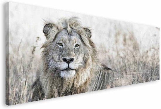 REINDERS Leeuw - Schilderij - 150x57cm