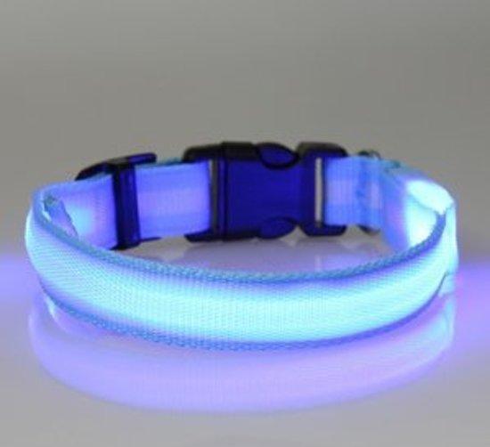 bol.com | hondenhalsband led verlichting small blauw