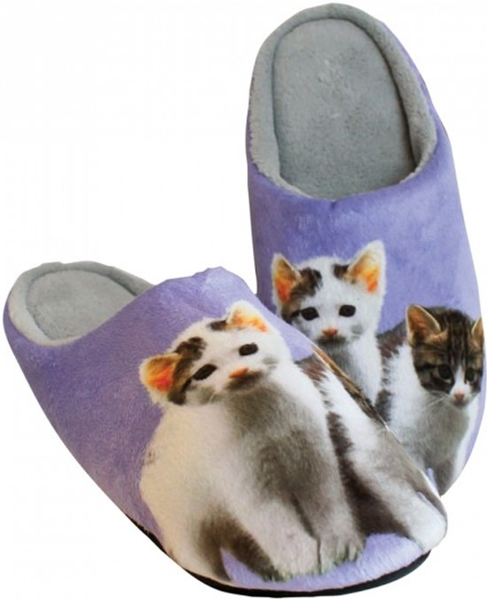 Chaussures Chats Taille 40/41 V8iKjdhAGu