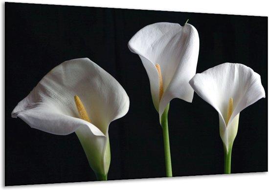 Glasschilderij Bloem   Wit, Geel, Zwart   120x70cm 1Luik   Foto print op Glas    F000890