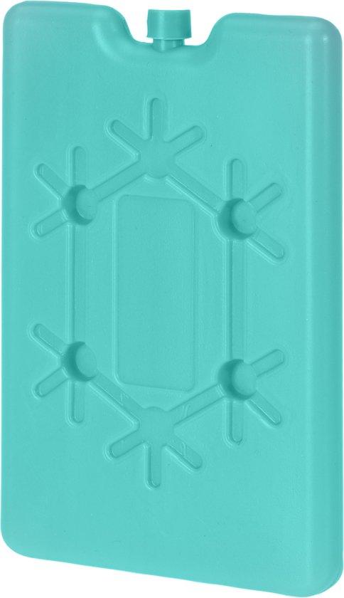 HomePlaceEU pak van 2 herbruikbaar ijspak voor koelboxen 16 x 10 x 1 cm 190gr. Groen
