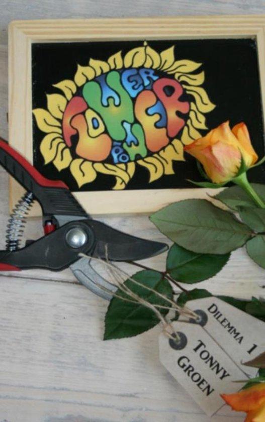 Dilemma reeks 1 - Flowerpower