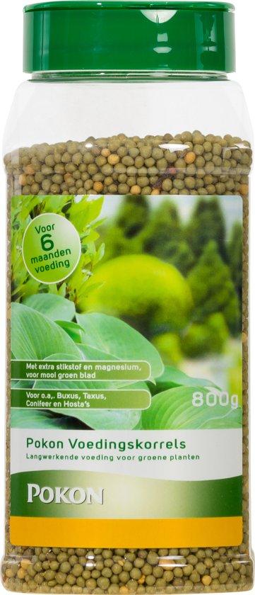 Pokon groene planten voeding langwerkende korrels 800 g